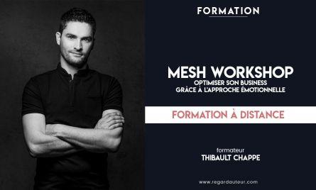 Formation à distance | MESH WORKSHOP