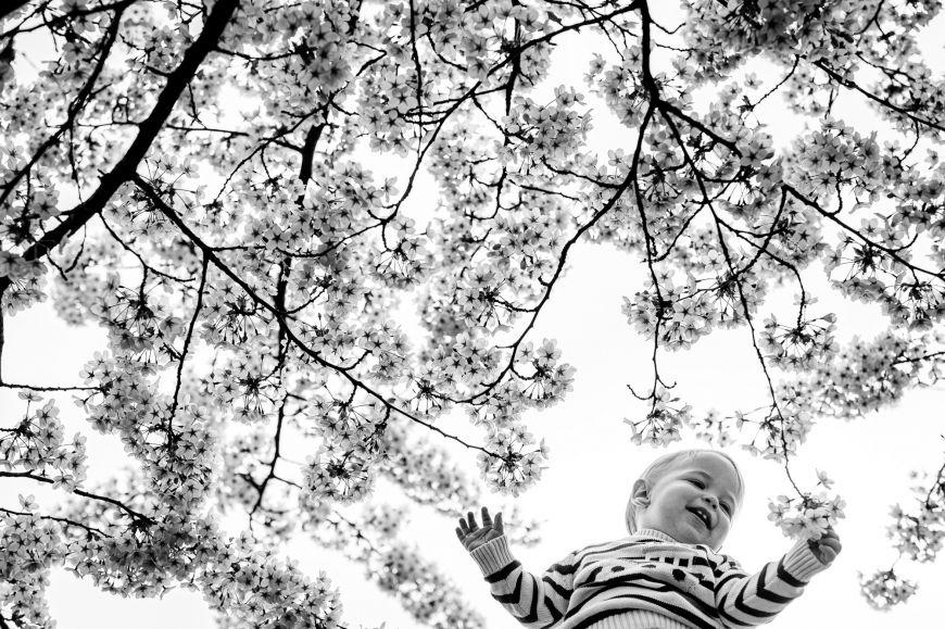portrait enfant bébé noir et blanc arbre