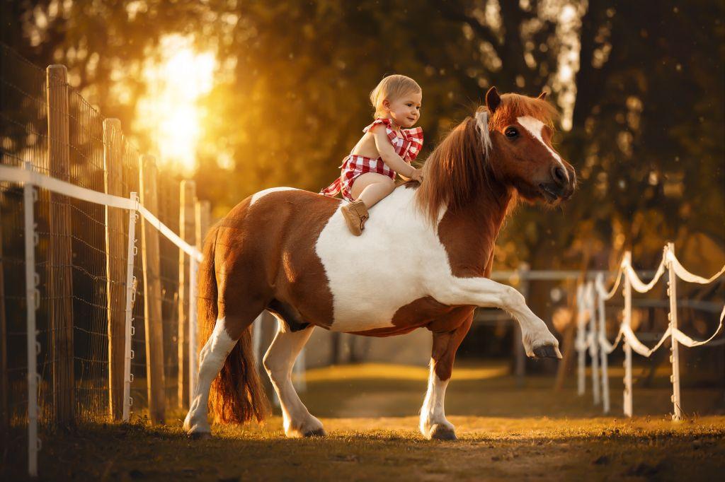 Formation photo portrait enfants & animaux par Vérène Sutter