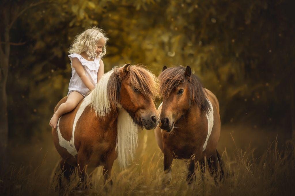 Formation photo portrait enfants & animaux par Verene Sutter 4