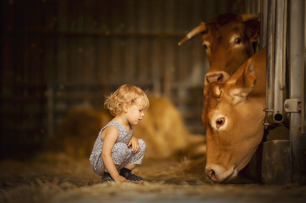 Formation photo portrait enfants & animaux par Vérène Sutter 3