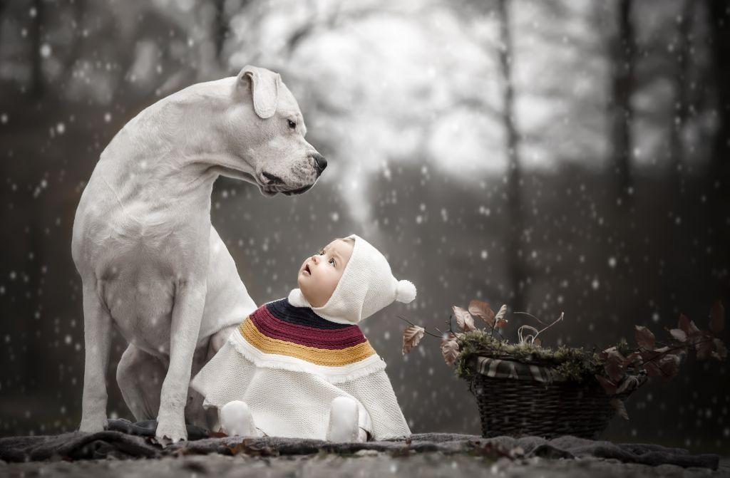 Formation photo portrait enfants & animaux par Vérène Sutter 2